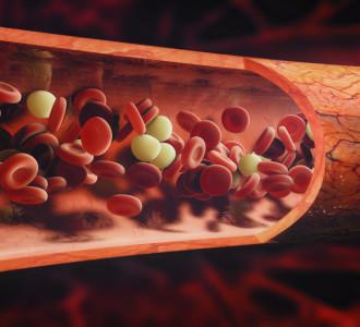 Benefici della vitamina K2 sulla circolazione